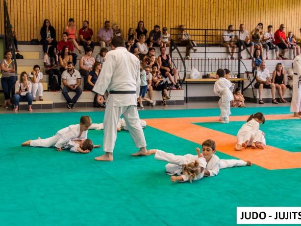 JUDO JUJITSU 01